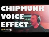 Chipmunk Voice Changer in the Multitrack of Adobe Audition